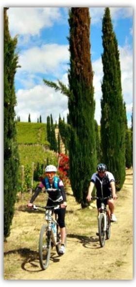 bike_def